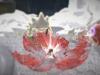 combat_01